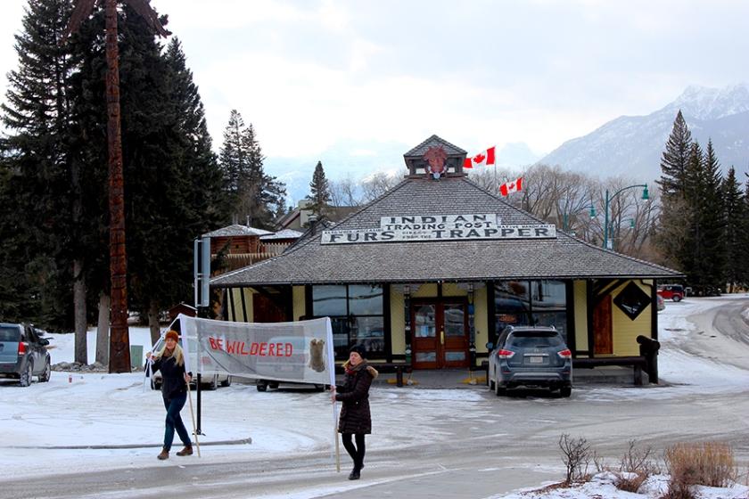 Bewildered in Banff a.