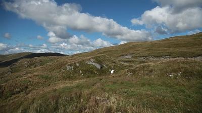 Llwybrau r Defaid sheep paths 4
